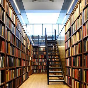 Библиотеки Горнозаводска